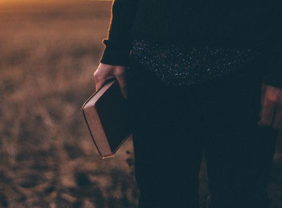 More Than Bible Translation